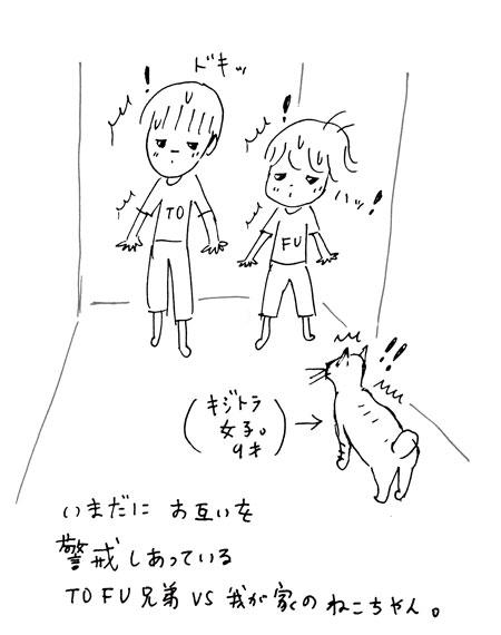 tofu8.jpg
