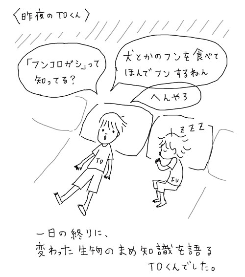 TO11.jpg